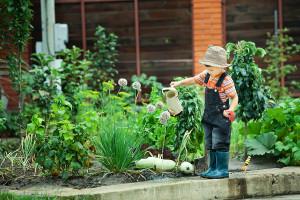 boy working in the garden in holiday