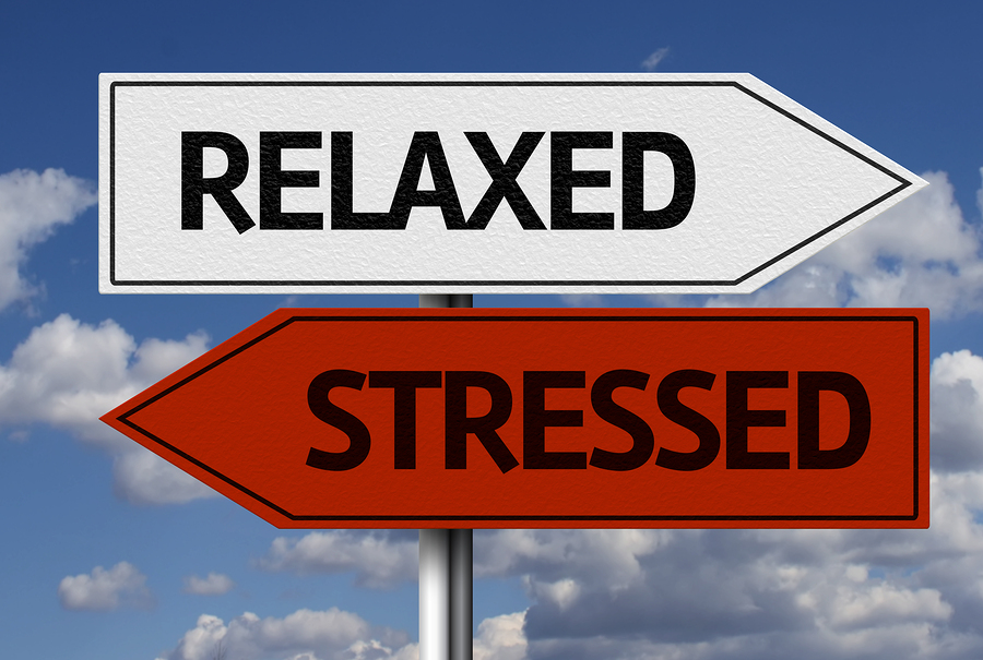 how to tell if your over stressed